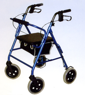 Image . This photo sponsored by Disability Access Equipment Category.