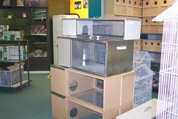 Image . This photo sponsored by Pet Hutches Category.