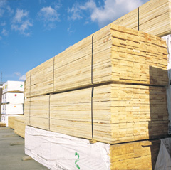 Image . This photo sponsored by Timber - Retail Category.