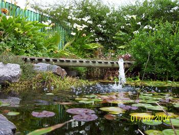 Water Feature Products Listing