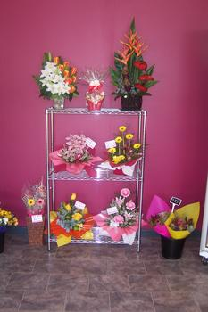 Image . This photo sponsored by Florists - Retail Category.