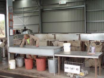 Scrap Metals Listing
