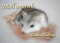 Visit Mollymawk Studio/Gallery