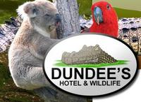 Visit Dundee's Wildlife Park