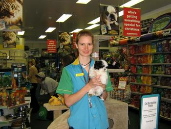 Image . This photo sponsored by Pet Shops Category.