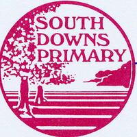 Visit South Downs Primary School