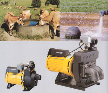 Image . This photo sponsored by Pumps - Domestic & Agriculture Category.